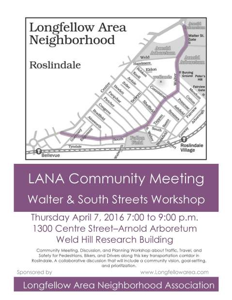 LANA Flyer for April 7th Community Workshop